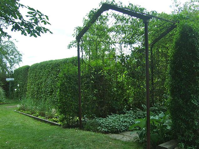 Trädgårdsplanering! | Lykkans Designträdgårdar